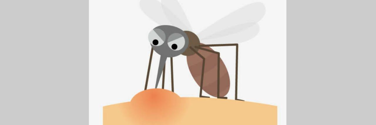 Lenyapkan Gatal dan Bentol Akibat Gigitan Nyamuk Dengan Bahan Alami