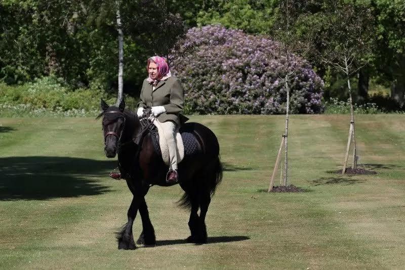 Pembatasan di Wilayah Inggris Melonggar, Ratu Elizabeth Berkuda