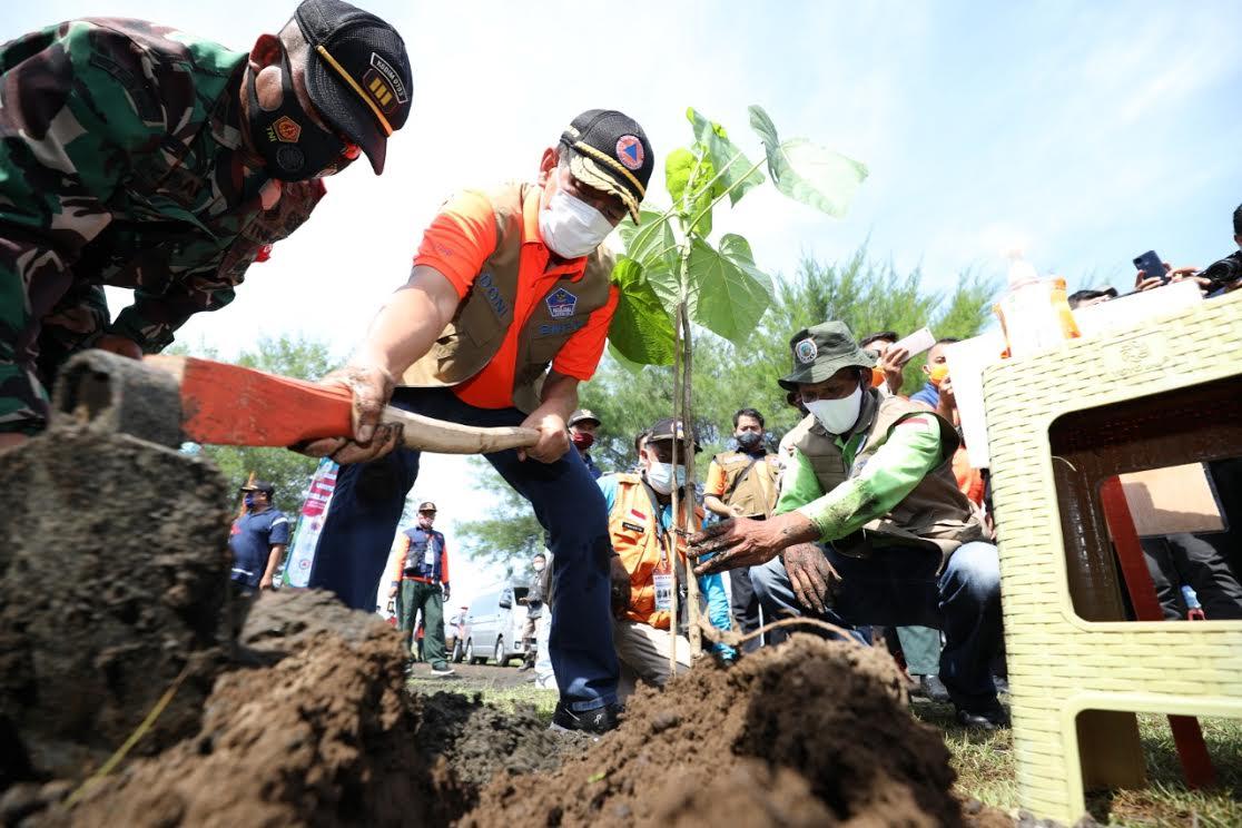 Kepala BNPB Tanam Pohon untuk Perkuat Mitigasi Berbasis Vegetasi di Selatan Jawa